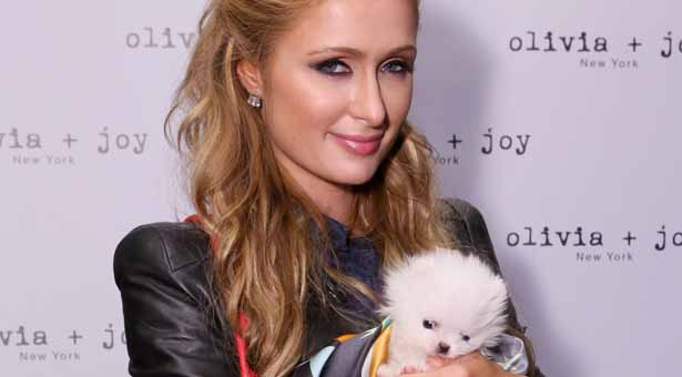 WEST HOLLYWOOD, CA - JANUARY 08:  Paris Hilton attends Kari Feinstein's Pre-Golden Globes Style Lounge at Andaz West Hollywood on January 8, 2015 in West Hollywood, California.  (Photo by Rebecca Sapp/WireImage)